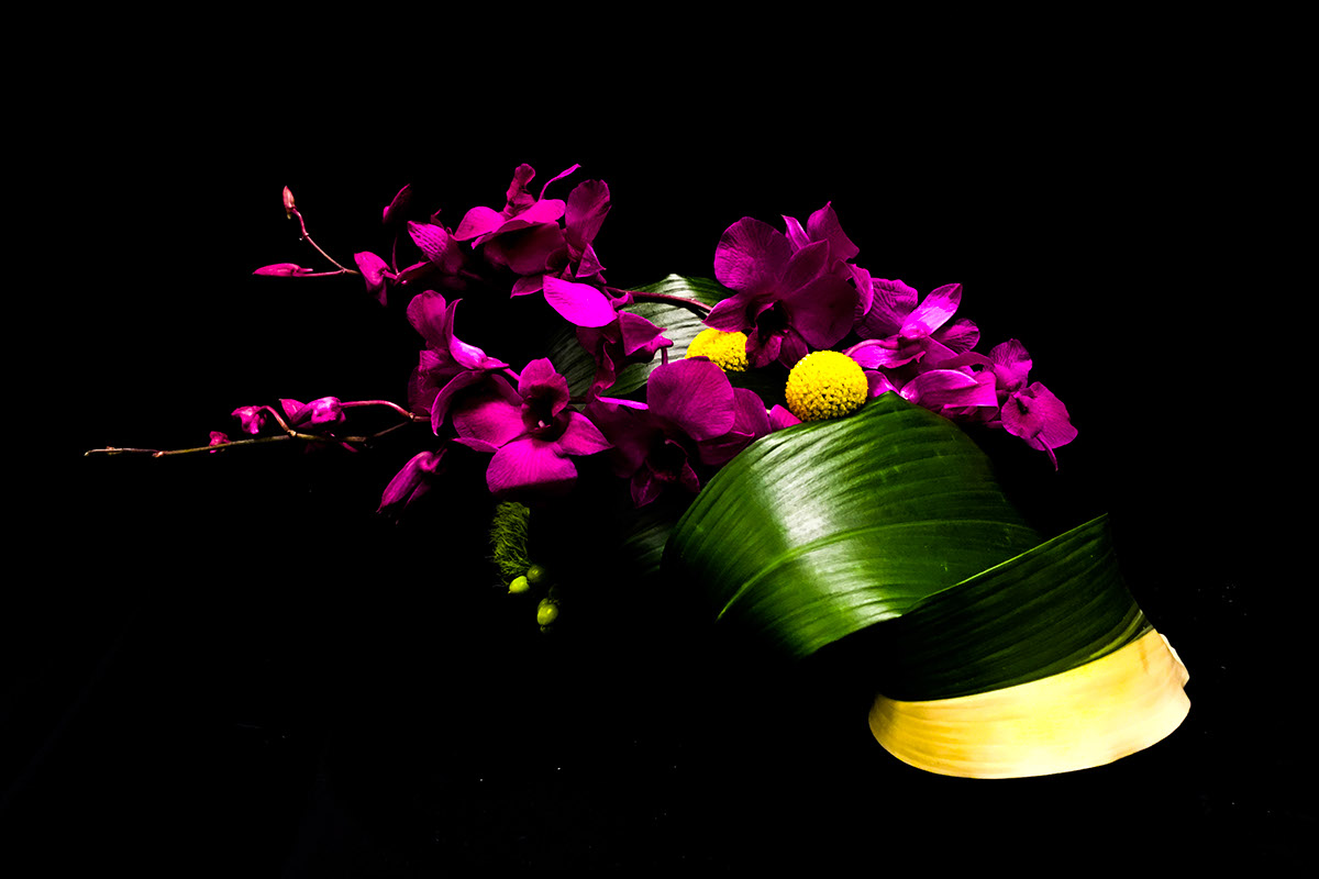 Nybg Floral Certification Ongoing On Behance