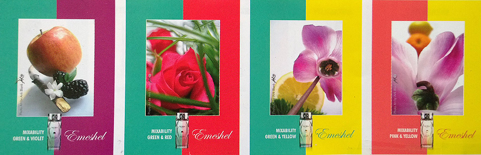 Photography in words word text pink red green yellow violet pink & yellow green & violet red & green Fragrance