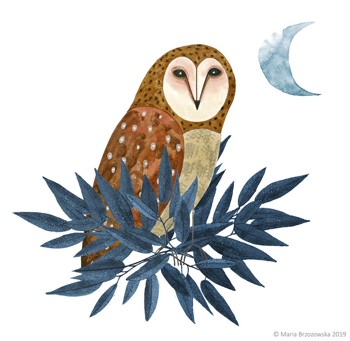 ILLUSTRATION ,painting  ,birds,Nature,plants,fairy tale,digital illustration,watercolor,photoshop,Illustrator