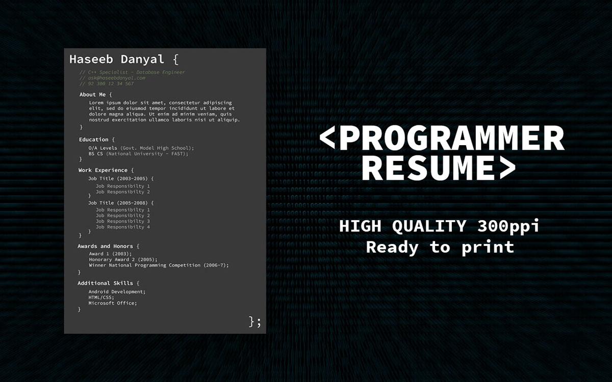 Resume programmer developer