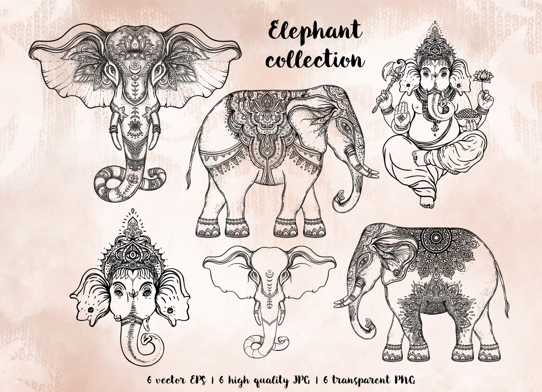 Elephant Vector Collection On Behance