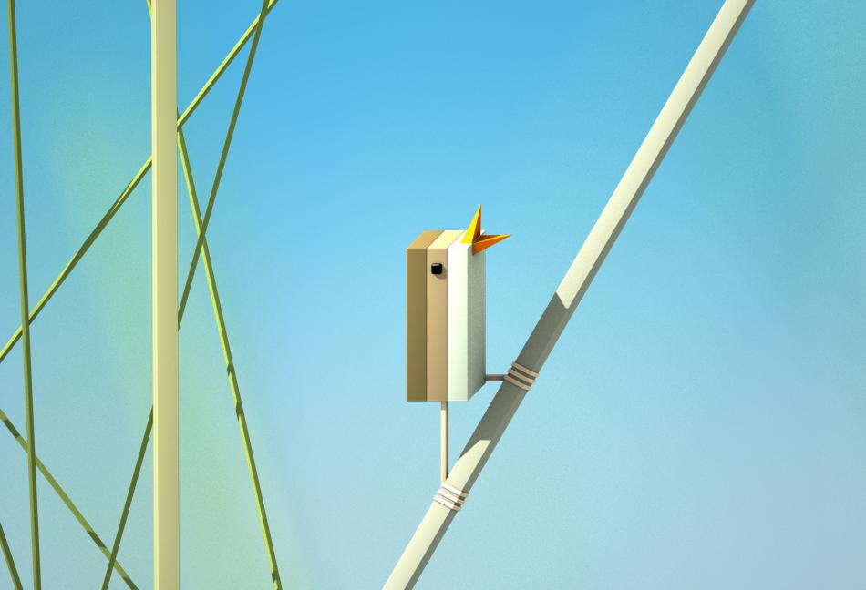 Adobe Portfolio bird cube geometry Nature
