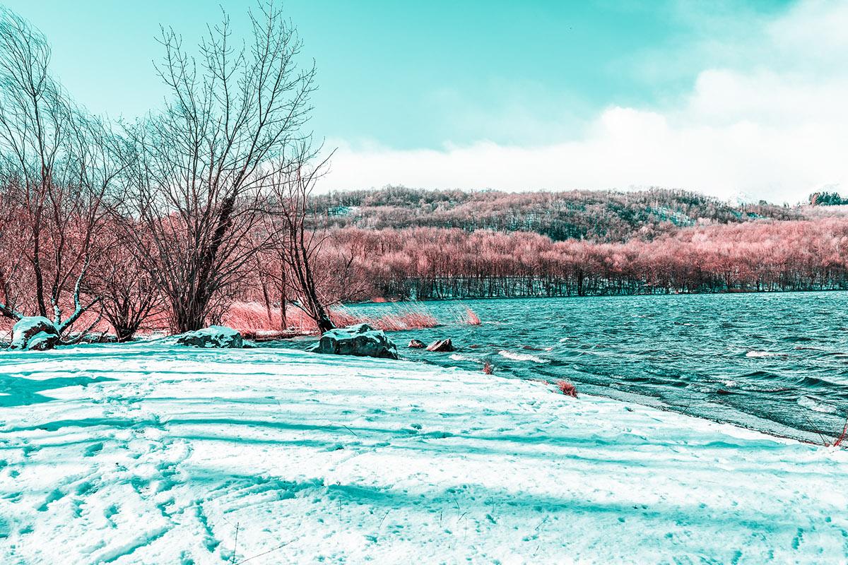 infrared digital photo Landscape Street Nature water red color light Urban art Aerochrome