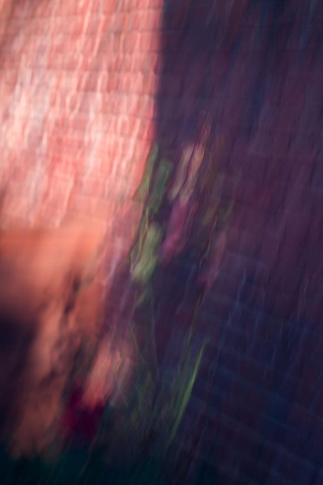 Photography  digital photography  art Digital Art  modern painting fine art fine art photography