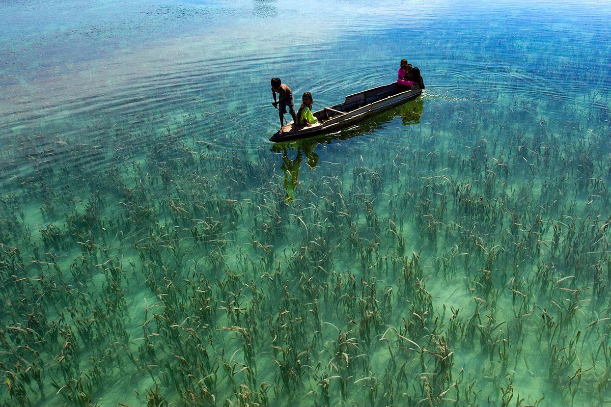 Adobe Portfolio sea gpysy bajau  underwater water malaysia Travel asia