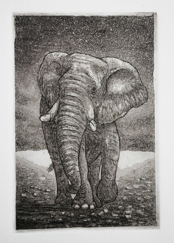 grabado elefante Muerte ojo ilustracion