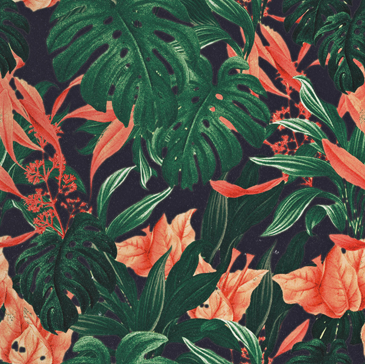 Free Floral Pattern On Behance