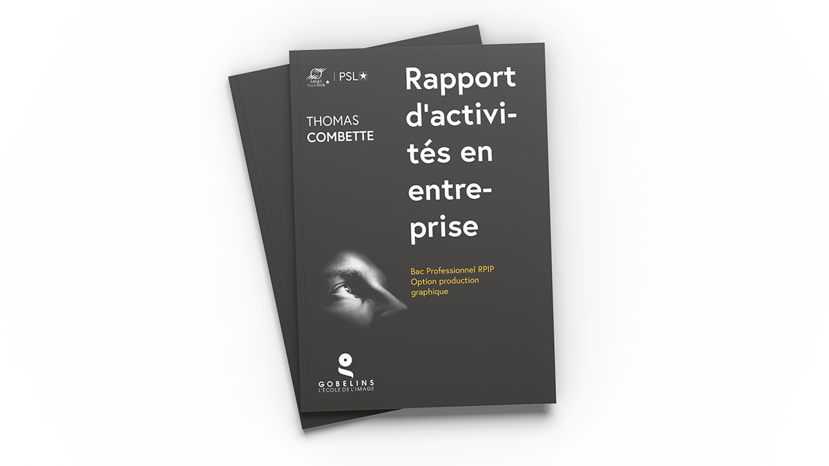 Rapport D Activités En Entreprise On Behance