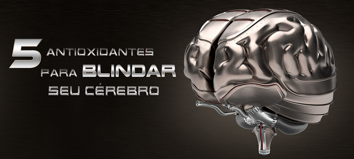 brain Cerebro Blog banner Capa cartaz