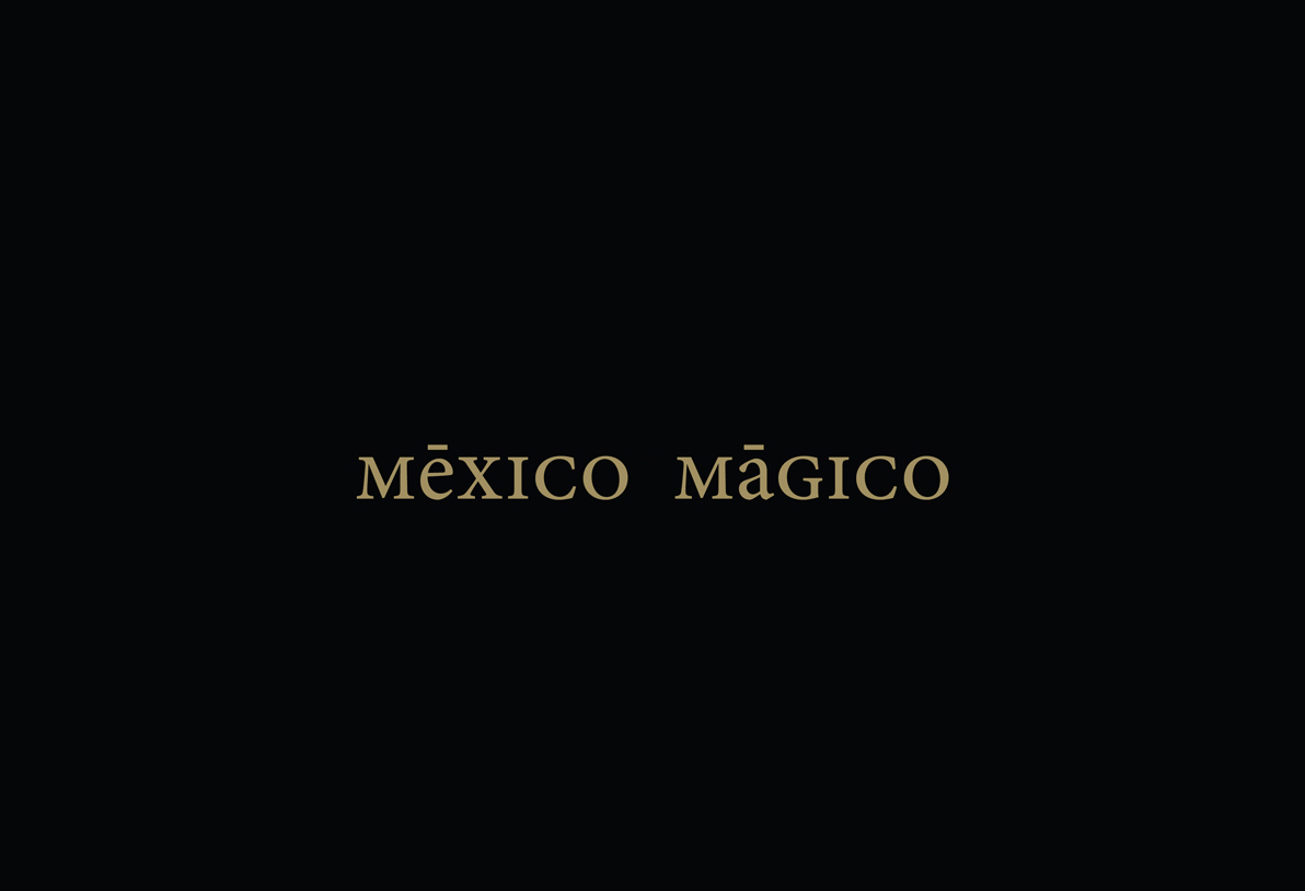 mexico Mexican mexicandesign gold GoldFoil printart pattern Patterns black