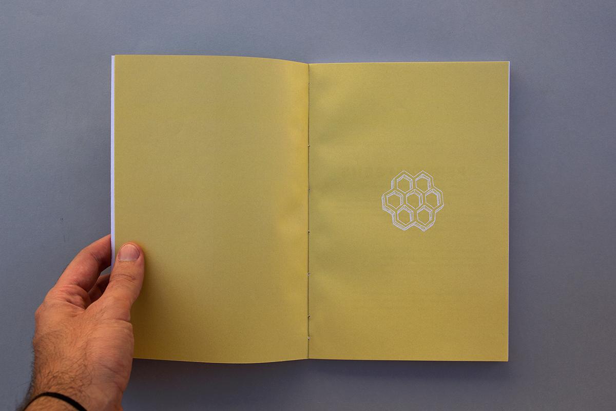 Livro book peça play teatro theater  jonathan andrade vespas adoráveis wasps lovely wasps