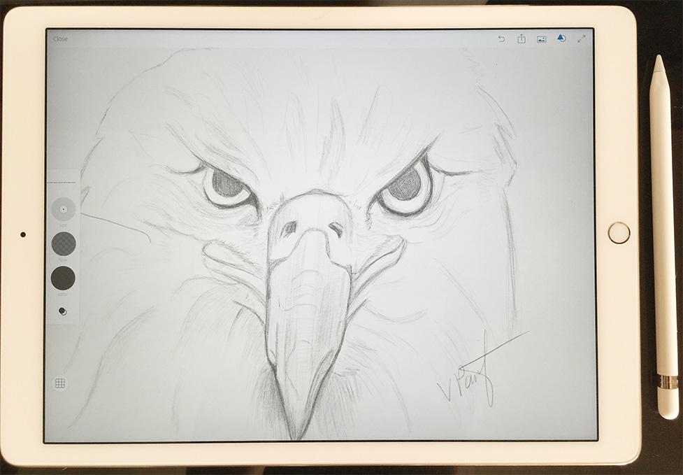 https www behance net gallery 31425103 adobe photoshop sketch ipad pro and apple pencil