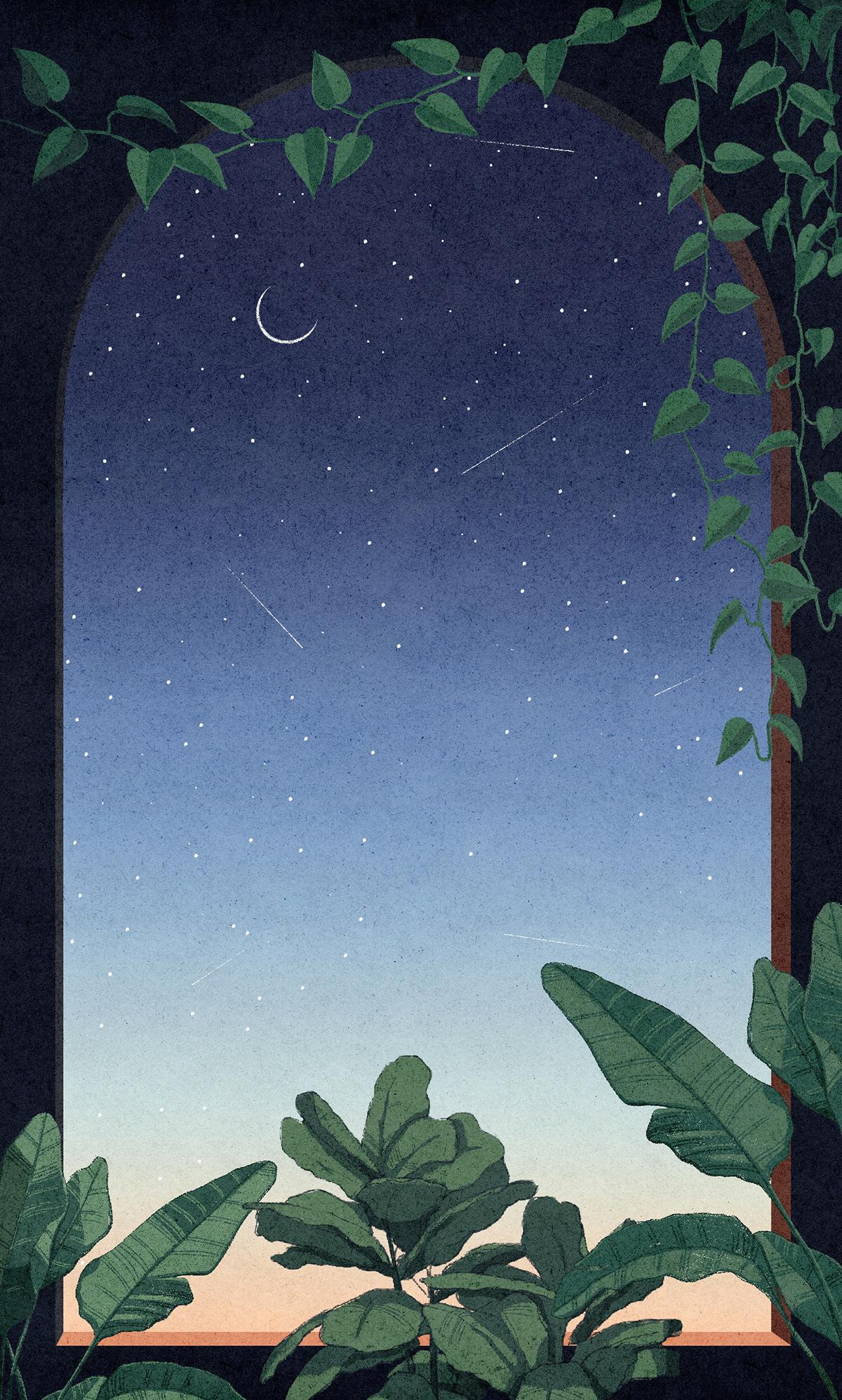 arch archway foliage ILLUSTRATION  moon night plants surreal surrealism Window