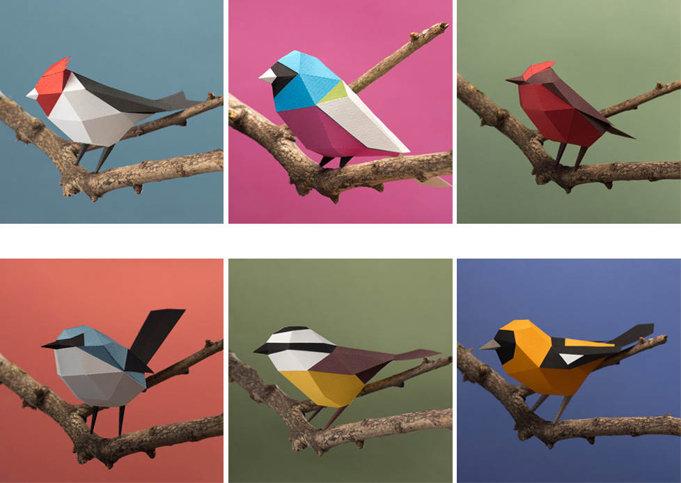 Colecci n aves argentinas aves para armar on behance for Papel de pared argentina
