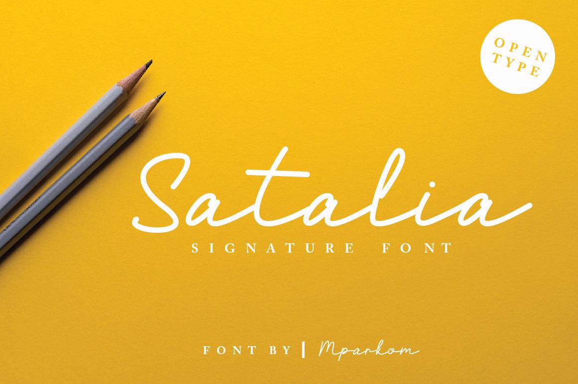 font signature Script type Logotype logodesign branding  Advertising