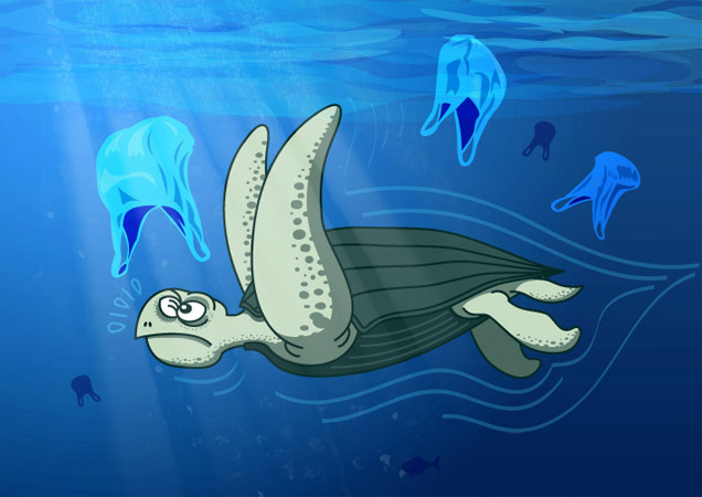 Leatherback sea turtle figuring out if what it sees is a jellyfish or a plastic bag