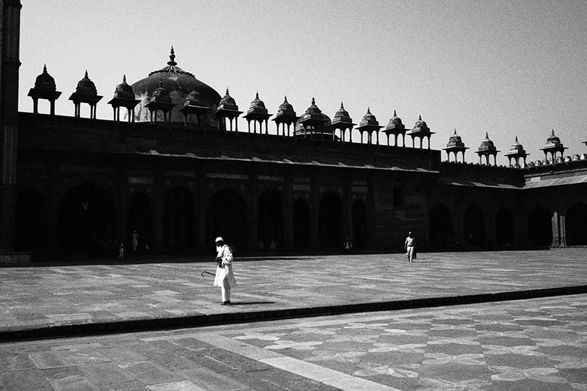 pueraria mirifica online india