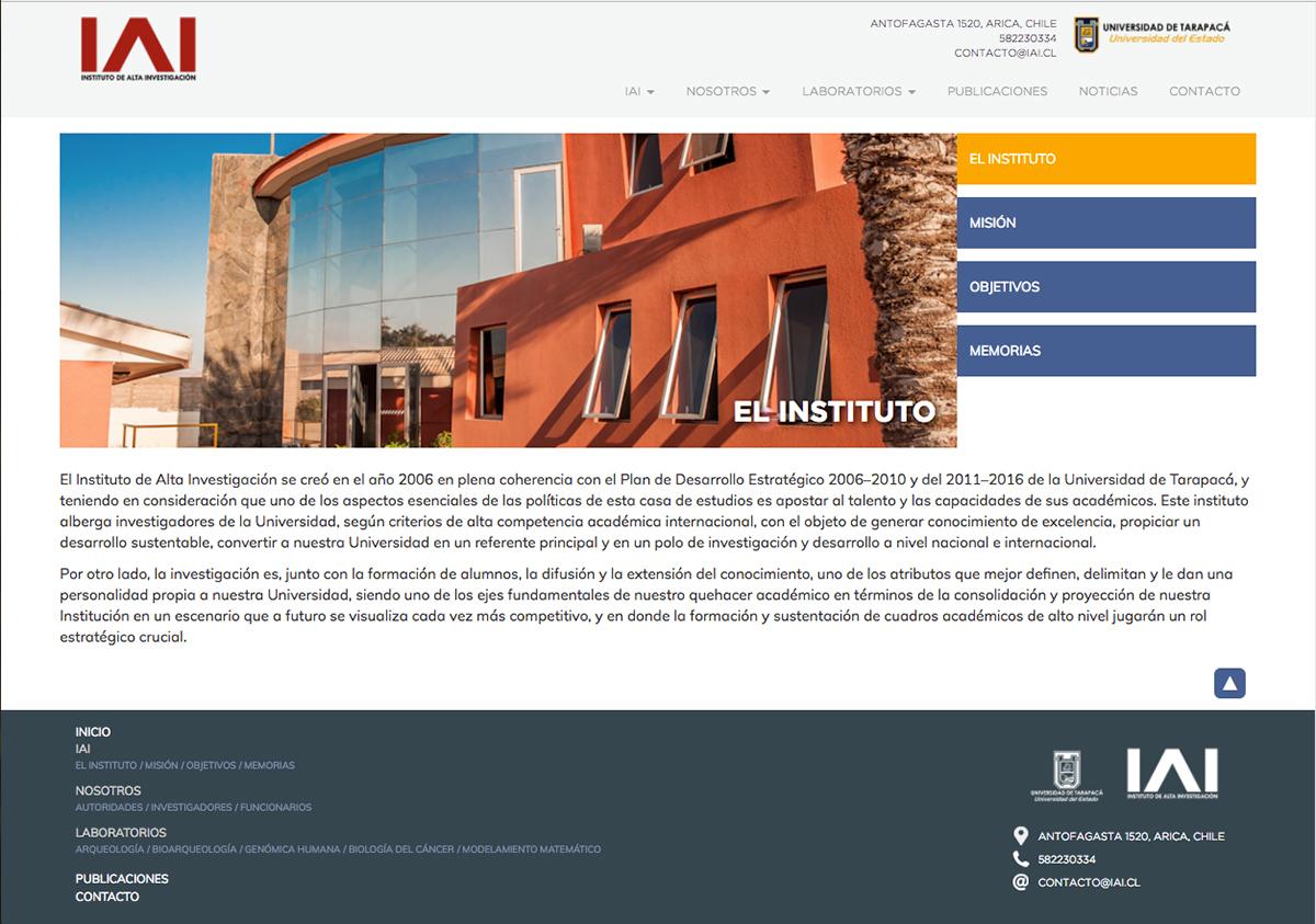 diseño gráfico diseño interactivo Diseño web wordpress php