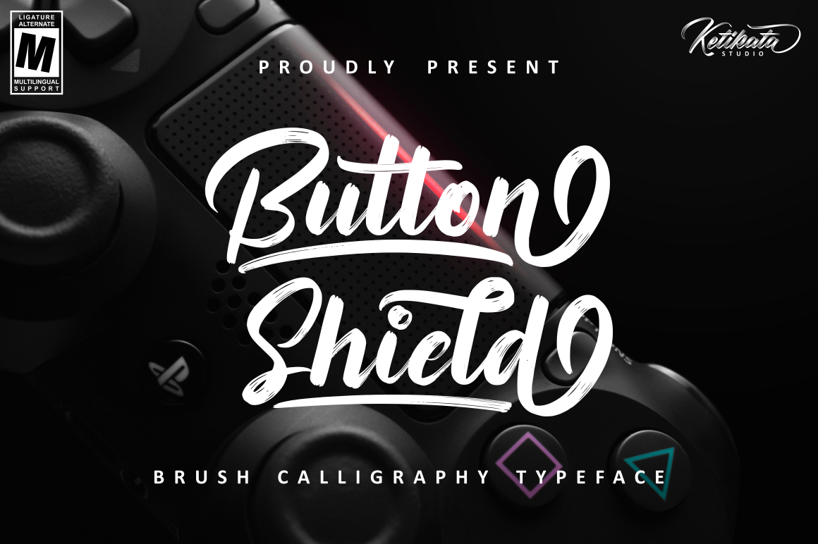 fonts Script sans Display lettering handwriting Typeface Calligraphy   Logotype bold