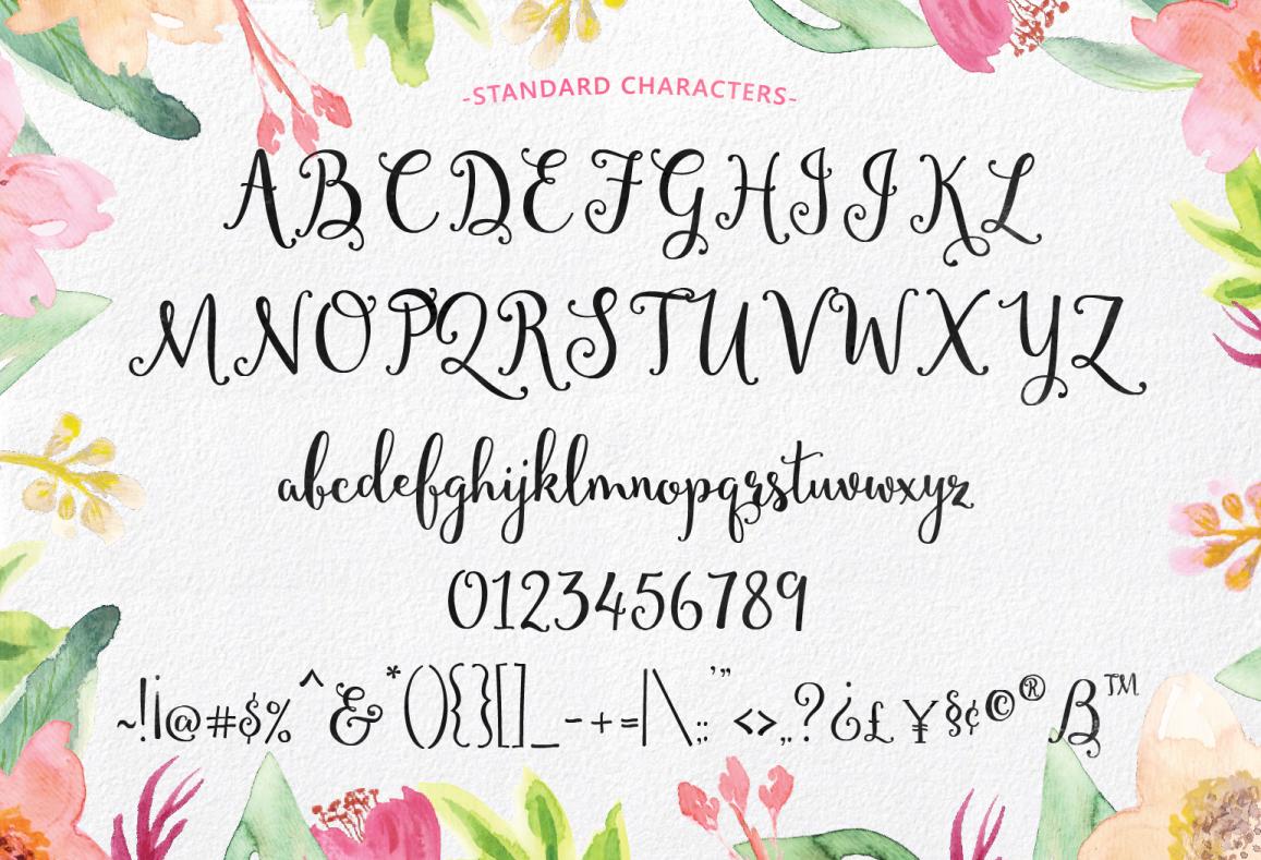 The swirly font bundle on behance kristyandbryce Choice Image