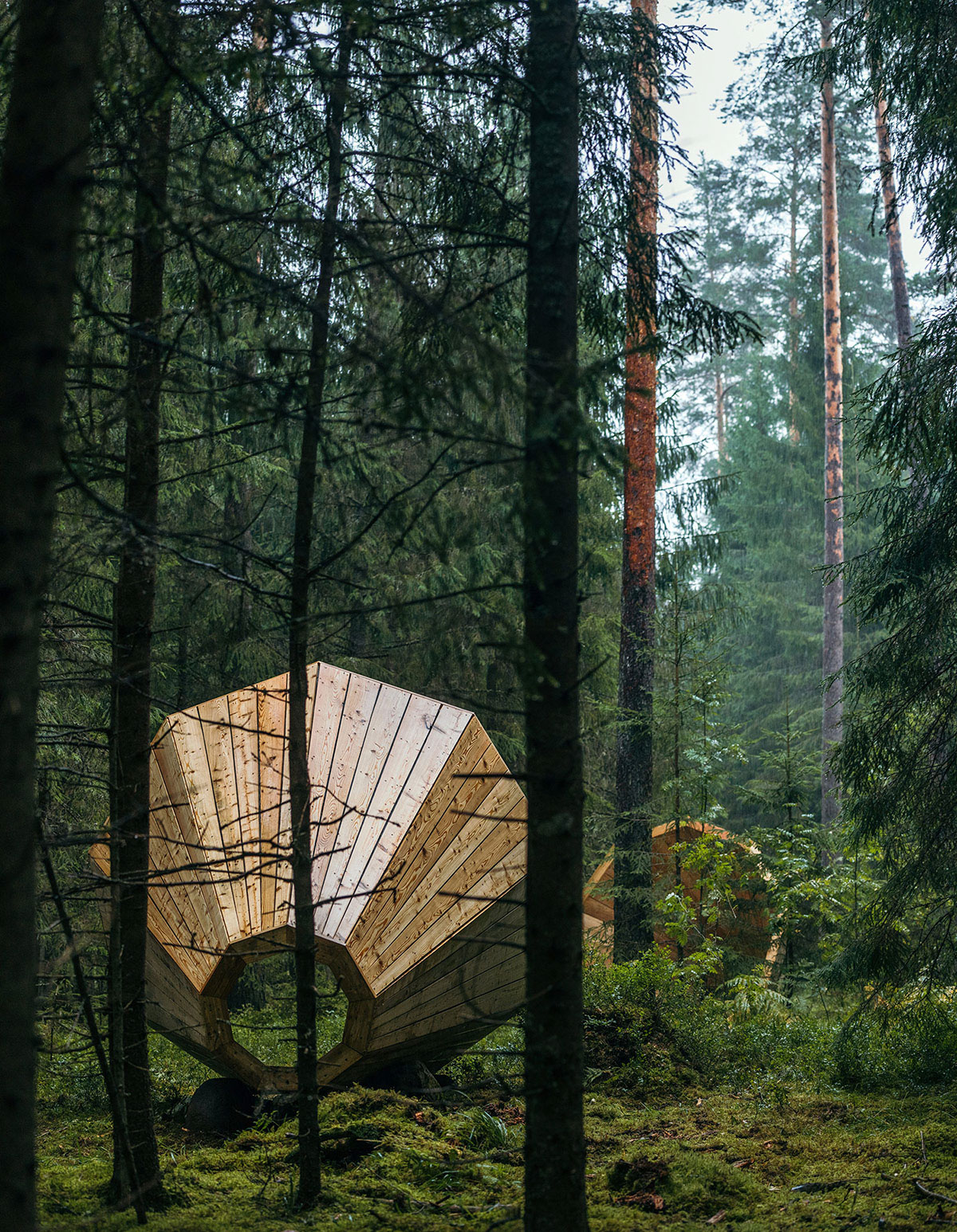 Estonian Forest Sounds on Behance