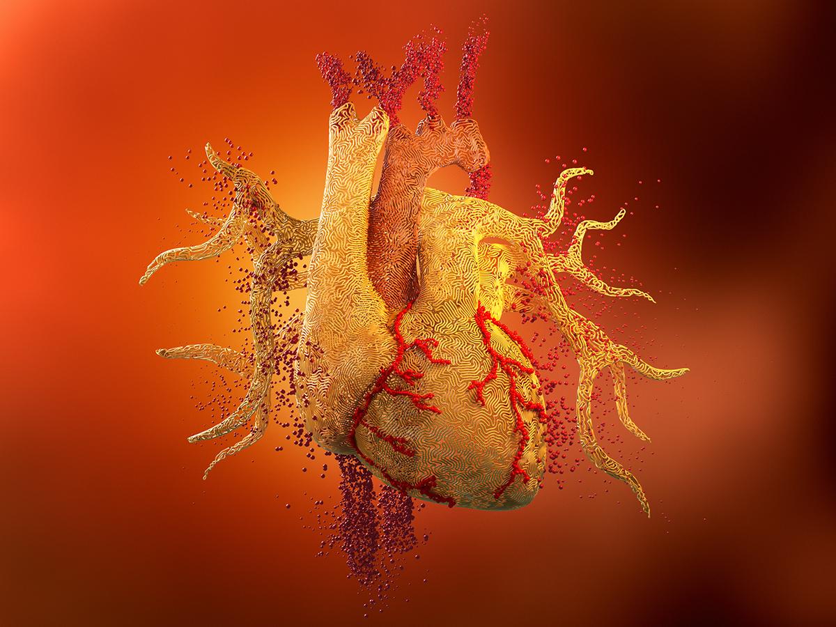 Adobe Portfolio CGI 3D heart Pharmaceutical medical Advertising