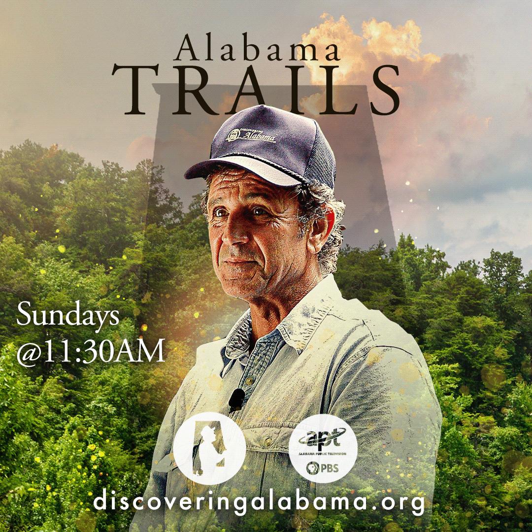 Discovering Alabama social media branding