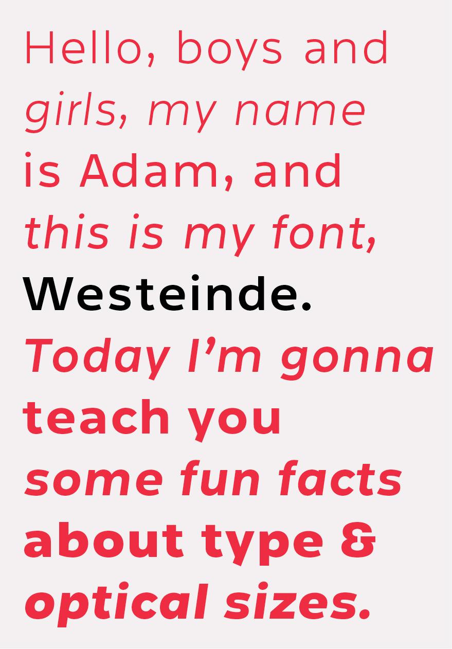 Typeface type font font family type family Westeinde letters typo sans serf sansserif optical size #TYPO16xAdobe