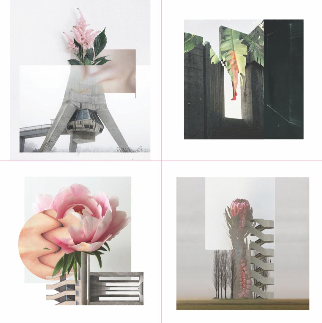 blur collage gender