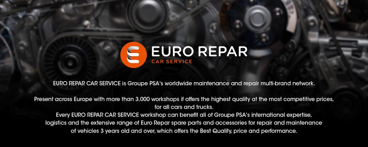 Details Euro Repar Car Service On Pantone Canvas Gallery