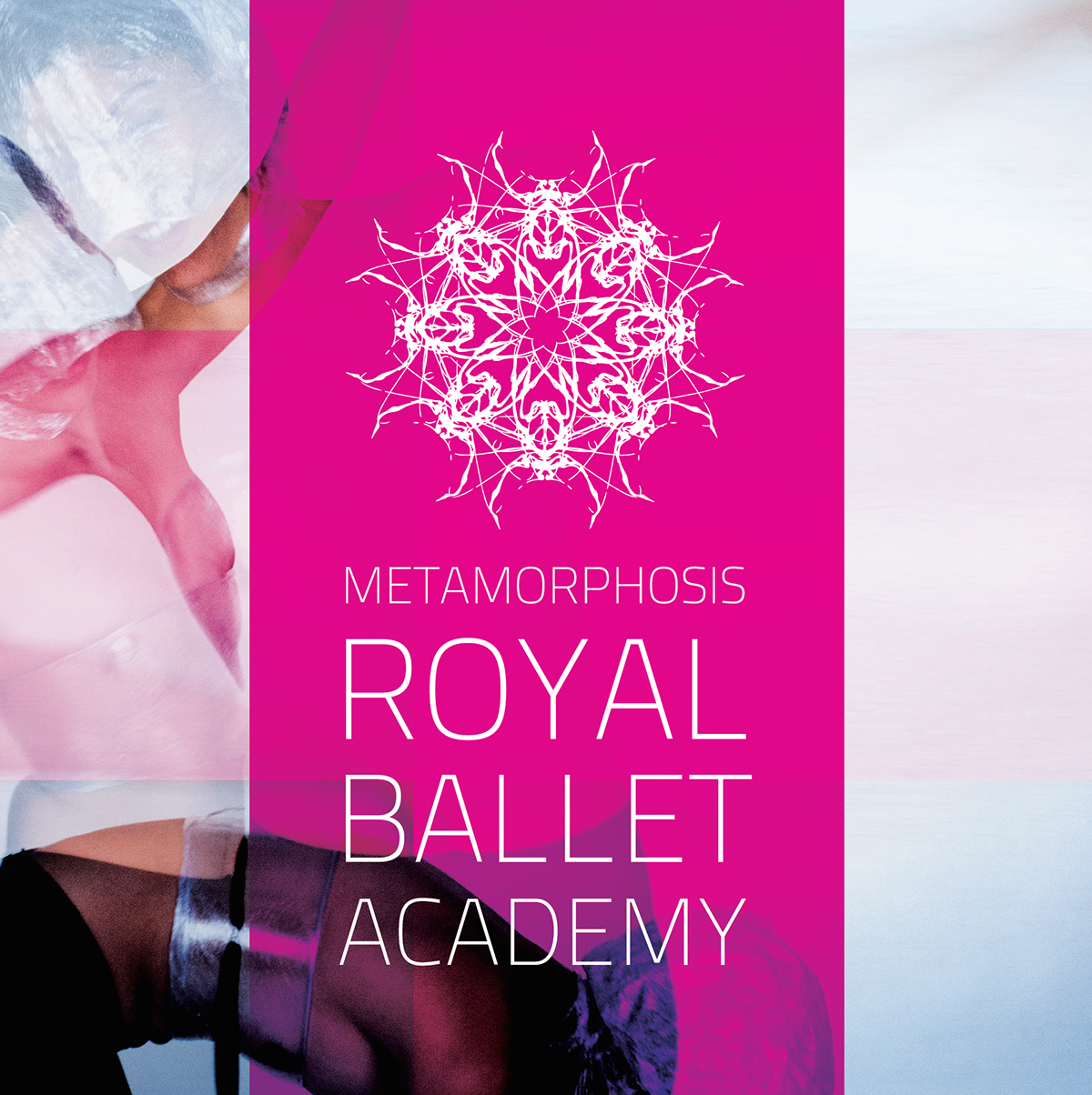 Metamorphosis ballet academy royal Insects DANCE   creative direction art identity