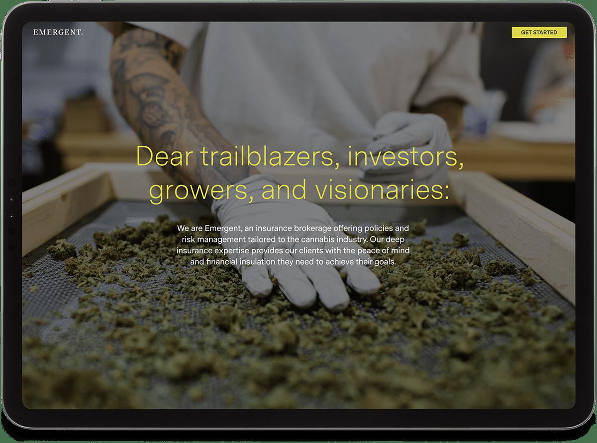 cannabis branding  Identity Design logo Website Website Design Brand System