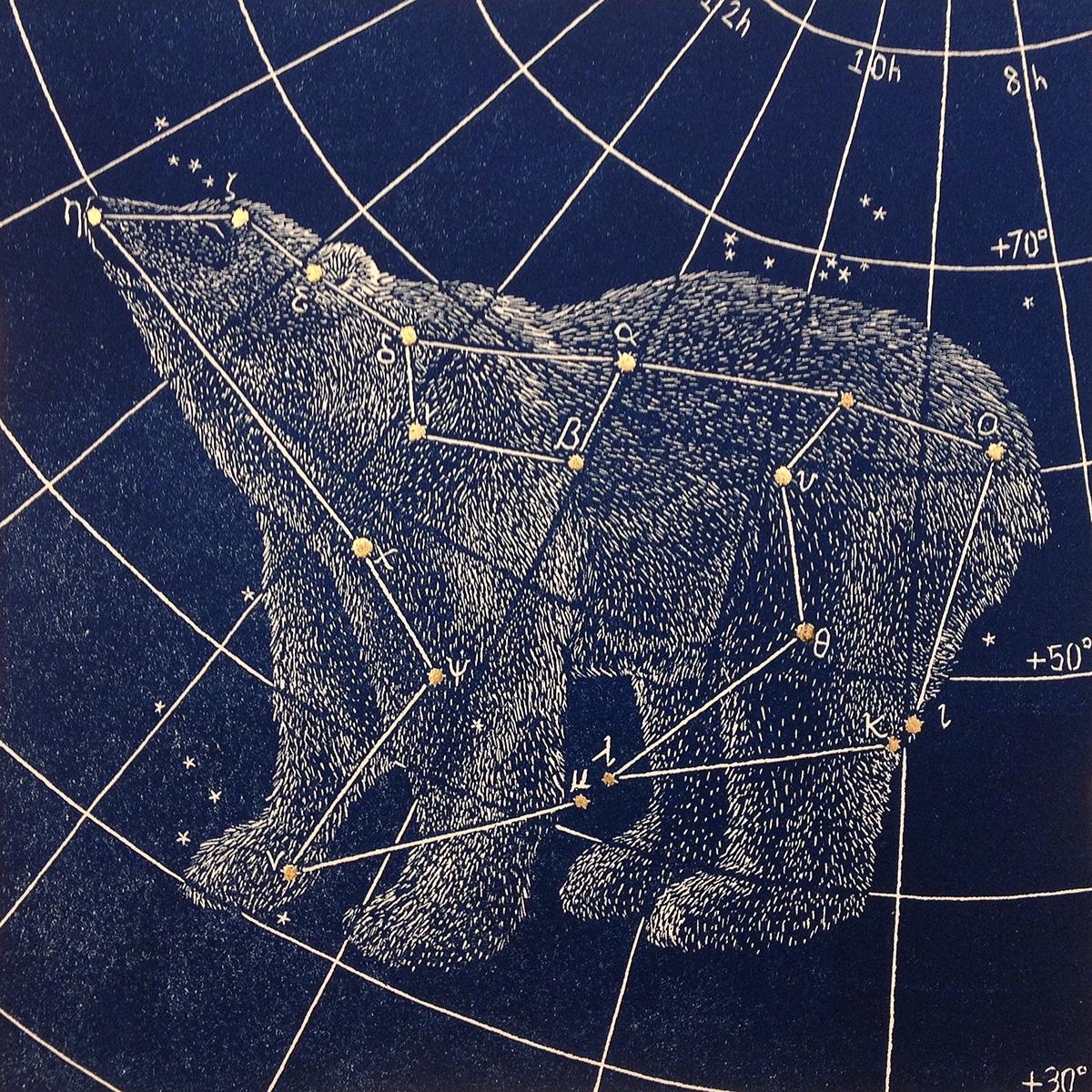 Созвездие белая медведица фото