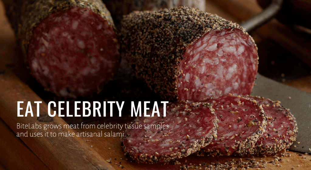 BiteLabs implores customers to 'EAT CELEBRITY MEAT', Image vua Hello Velocity /Behance