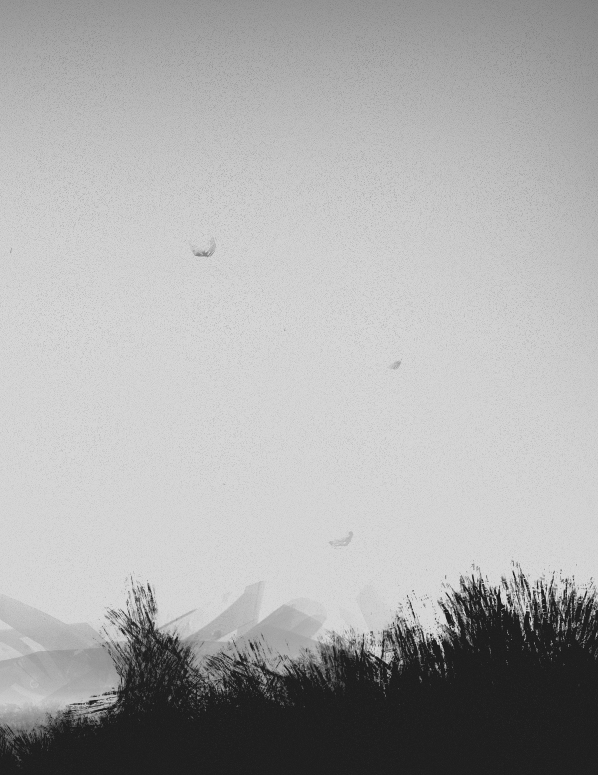 Landscape monochrome black and white Sun dust grass human noise dark empty unknown lonely pessimistic calm