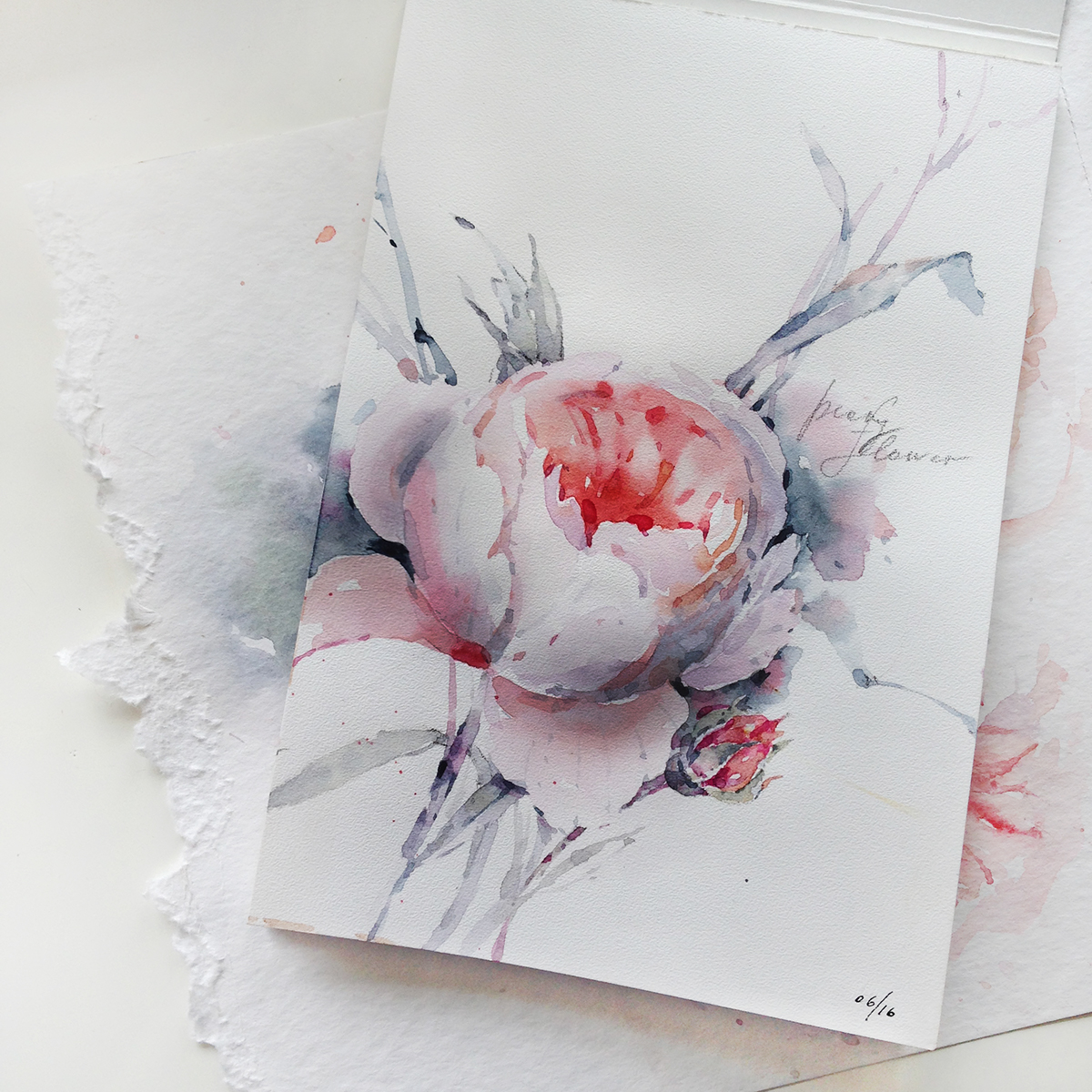 Watercolor Sketches Of The Flowers On Behance