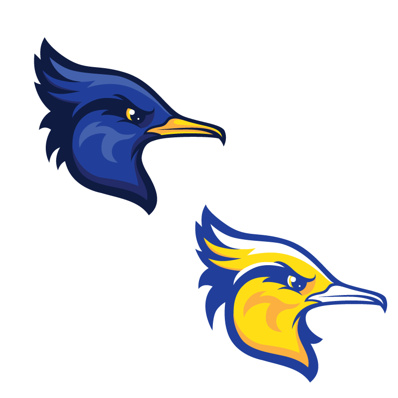 school Mascot sport team roadrunner bird