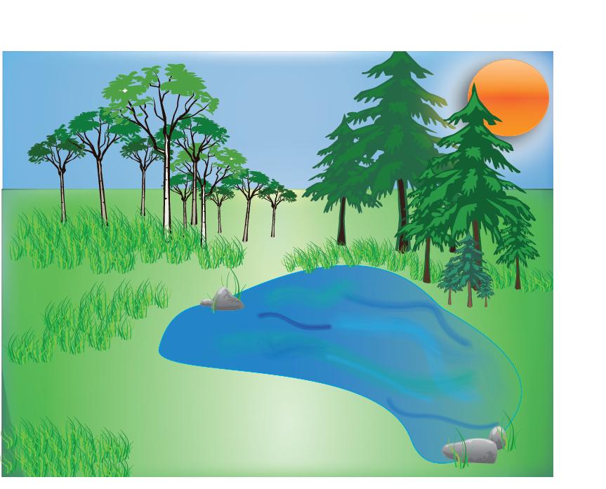 Adobe Illustrator Landscape On Behance