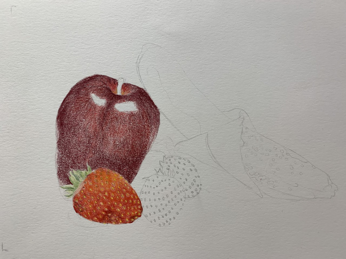 Image may contain: drawing, art and fruit