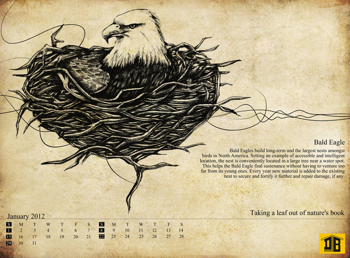 Calender,builders,new year,home,nest,birds,real estate,realestatecalender,housing