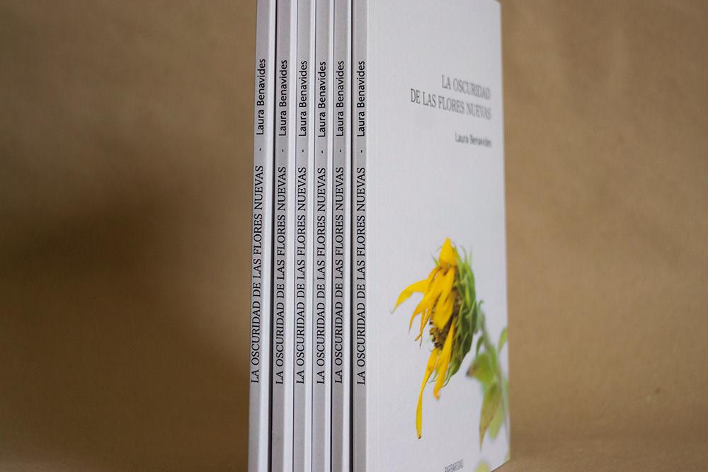 Seis libros de canto