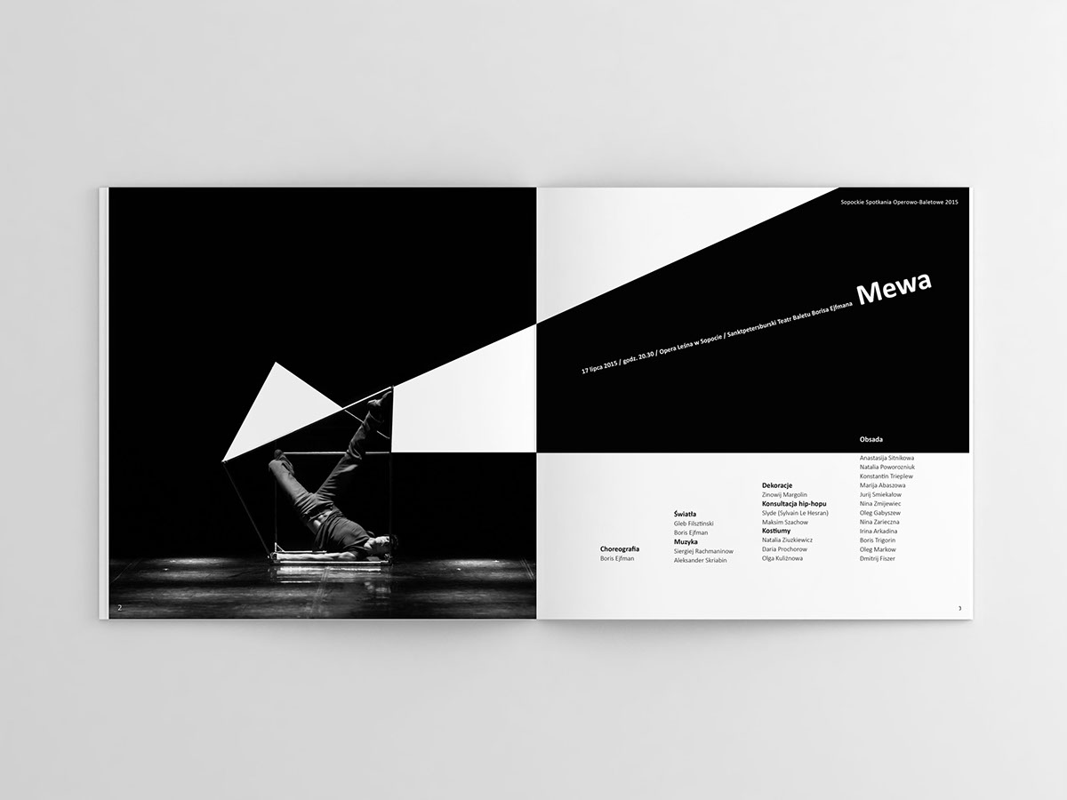 publication brochure