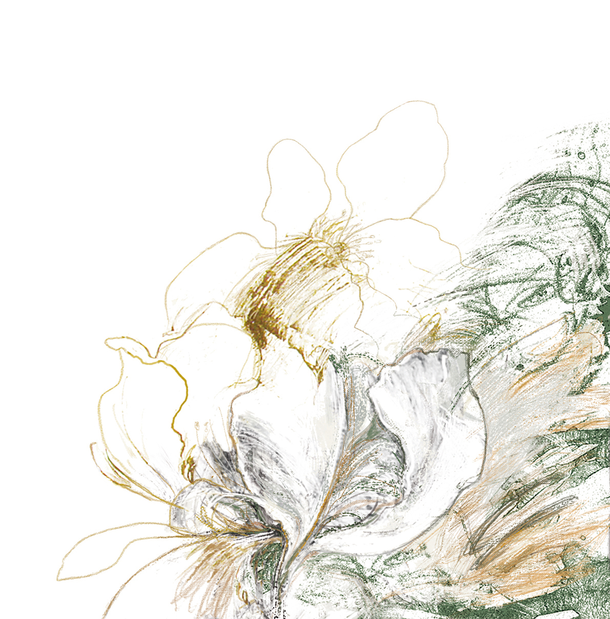 dibujo Flores digital ilustración digital