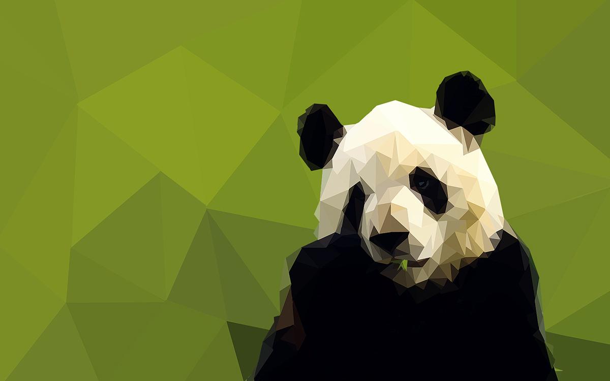 wolf Panda  Like haski penza