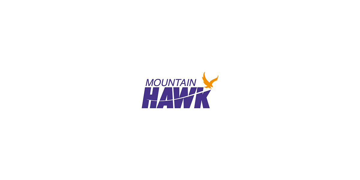Client Fedex Srilankan Agent Logo Moutain Hawk Agency Leo Burnett Sri Lanka Design Jayana Rashintha