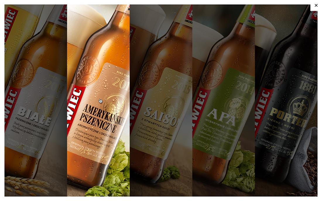 beer craft beer product design  taste appeal Web Design  żywiec