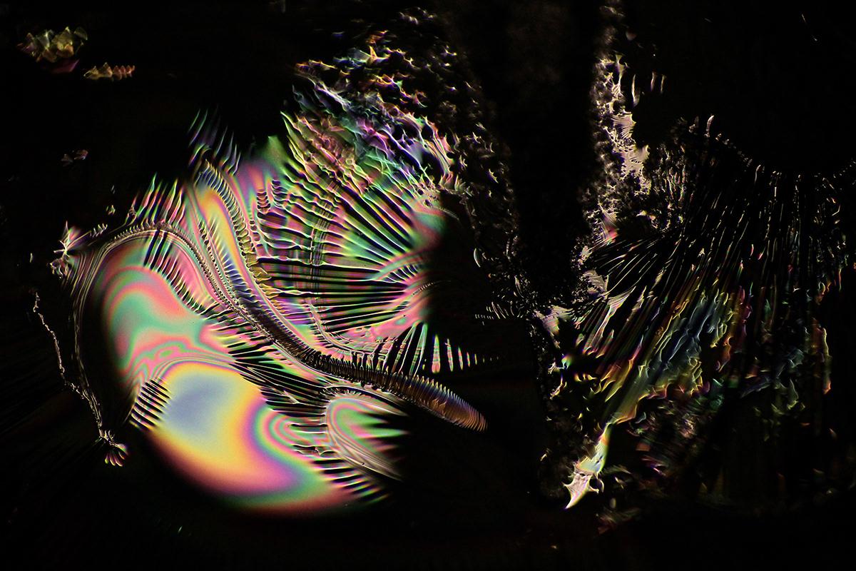 artwork coexist TheXX