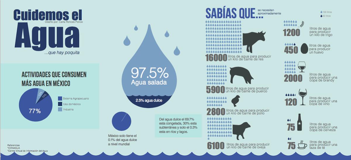 Cuidemos el agua infograf a on behance for Bungalows sobre el agua en mexico