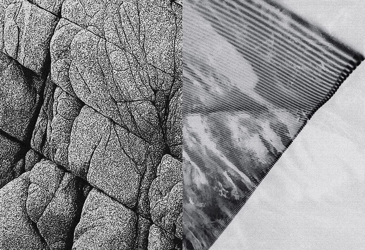 art book surface border experimental painting   ILLUSTRATION  Nature Zine  Drawing