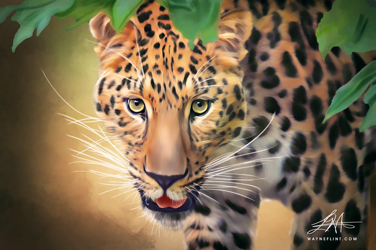 art artwork asia bobcat canvas central american cheetah cougar jaguar jungle leopard lion lynx Paintings photoshop prints puma sketch gallery tiger Wayne Flint